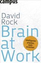 David Rock, Daniel J. Siegel, Nicole Hölsken - Brain at Work