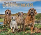 BrownTrout Publisher, Browntrout Publishers (COR) - For the Love of Golden Retrievers 2018 Calendar
