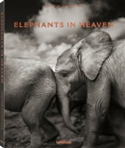 Joachim Schmeisser - Elephants in Heaven