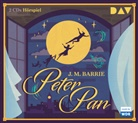 James Matthew Barrie, Laura Schwamman - Peter Pan, 2 Audio-CDs (Hörbuch)
