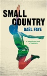 Gael Faye, Gaël Faye - Small Country