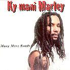 Ky-Mani Marley - Many More Roads