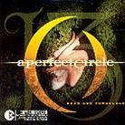 A Perfect Circle - Weak And Powerless - 2 Track