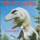 Pylon (Post-Punk) - Chomp More