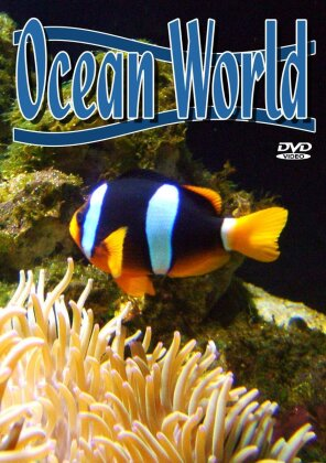 Various Artists - Ocean world