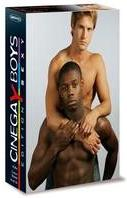 Cinegay Boys (Edition Sexy, Box, Collector's Edition, 3 DVDs)