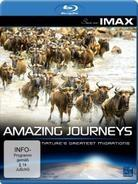 Amazing journeys - (Seen on IMAX)
