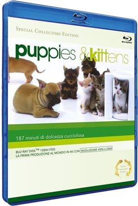 Puppies & Kittens (Collector's Edition, Special Edition)