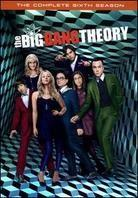 The Big Bang Theory - Season 6 (3 DVDs)