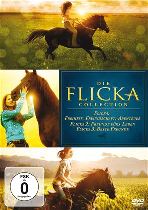 Die Flicka Collection - Flicka 1-3 (2 DVDs)