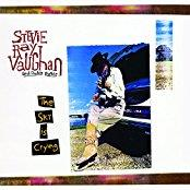 Stevie Ray Vaughan - The Sky Is Crying - 2017 Reissue, Analogue Productions (2 LPs)