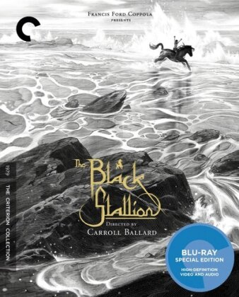 The Black Stallion (1979) (Criterion Collection)