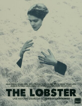 The Lobster (2015) (Limited Edition, Steelbook, Blu-ray + DVD)