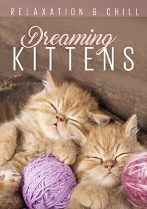 Dreaming Kittens (Relaxation & Chill)