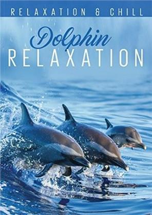 Dolphin Relaxation (Relaxation & Chill)