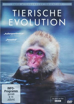 Tierische Evolution - David Attenborough (BBC)