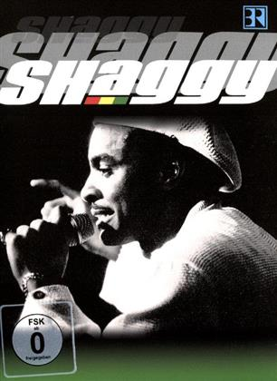 Shaggy - Live At Chiemsee Festival (Inofficial)