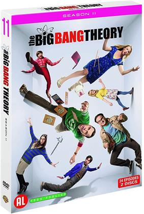The Big Bang Theory - Saison 11 (2 DVDs)