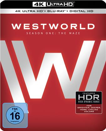 Westworld - Staffel 1 - Das Labyrinth (Metalbox, Sammler Edition, Limited Edition, 3 4K Ultra HDs + 3 Blu-rays)