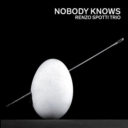 Renzo Spotti Trio - Nobody Knows