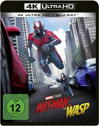 Ant-Man and the Wasp (2018) (4K Ultra HD + Blu-ray)