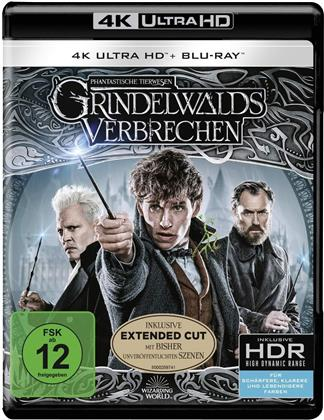 Phantastische Tierwesen 2 - Grindelwalds Verbrechen (2018) (Extended Edition, Versione Cinema, 4K Ultra HD + 2 Blu-ray)