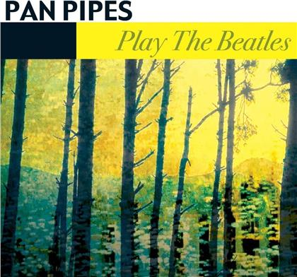 Panpipes - Play The Beatles
