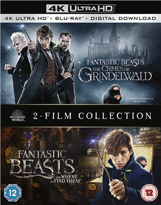 Fantastic Beasts and where to find them / The Crimes of Grindelwald - 2-Film Collection (2 4K Ultra HDs + 2 Blu-rays)