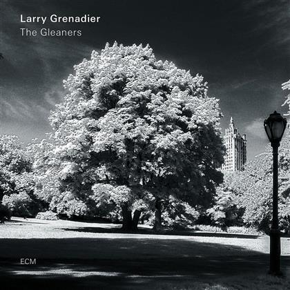 Larry Grenadier - Gleaners (LP)