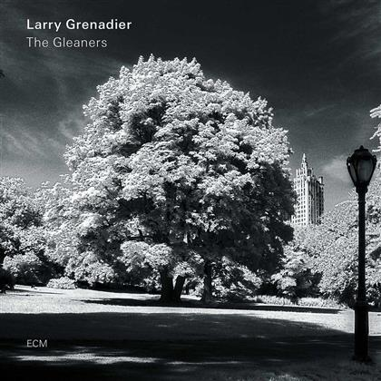 Larry Grenadier - Gleaners