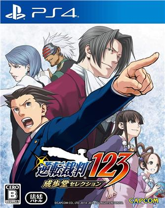Phoenix Wright Ace Attorney (Japan Edition)
