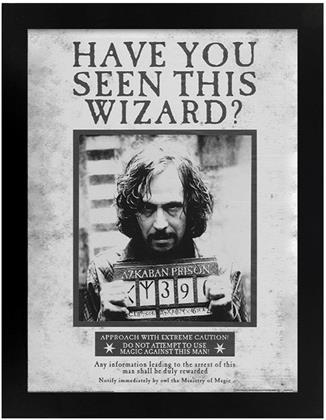 Harry Potter - Sirius Wanted - Black Wooden Framed Poster