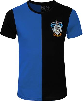 Harry Potter Ravenclaw Quidditch Team