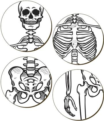 Dem Bones Skeleton 4 Piece Coaster Set