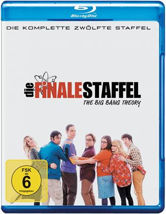 The Big Bang Theory - Staffel 12 - Die finale Staffel (3 Blu-rays)