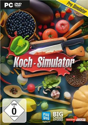 Koch-Simulator